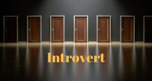 Utilizatori introvert - online profiling