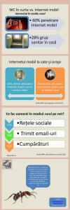 Internetul mobil la romani+ infografic 2.IXPR