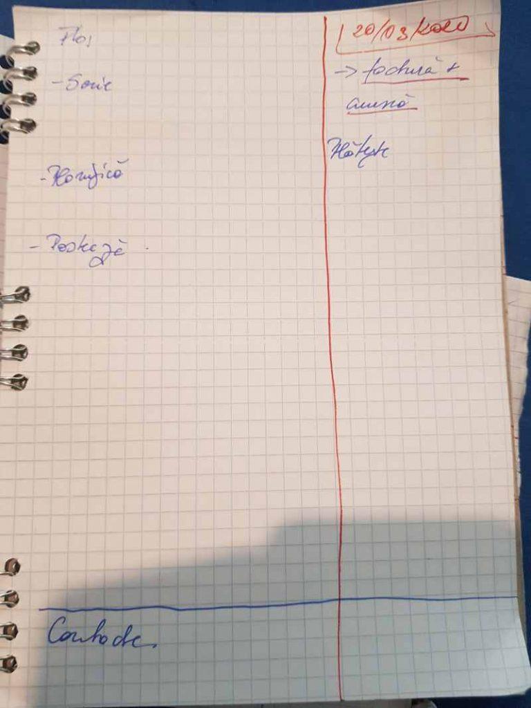 planificare caiet - simulare la ziua de maine